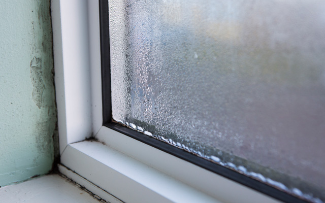 replace leaking windows